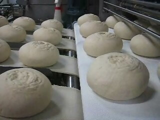 In Line Pizza Dough Systems 3